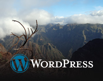 Wordpress website over Madeira